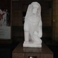 Shanghai museum, zanimljivi čuvari