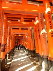 Fushimi-Inari-Taisha hram, dio od njegovih 32000 Torii-ja