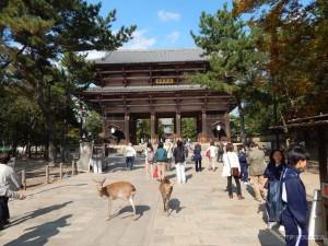 Todaiji hram, glavni ulaz