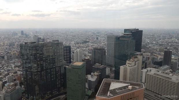 Tokyo Metropolitan Government Building, pogled na grad sa vrha