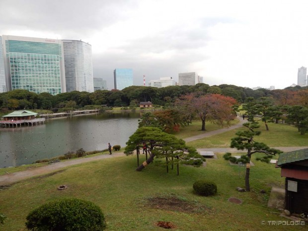 Hama-rikyu Gardens, zeleni raj usred urbane džungle