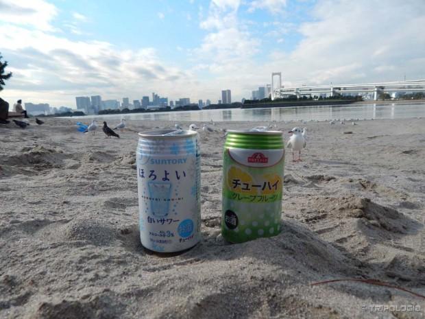 Japanska idila, dvije pive na plaži u pijesku, galebovi i pogled na kopno sa otoka