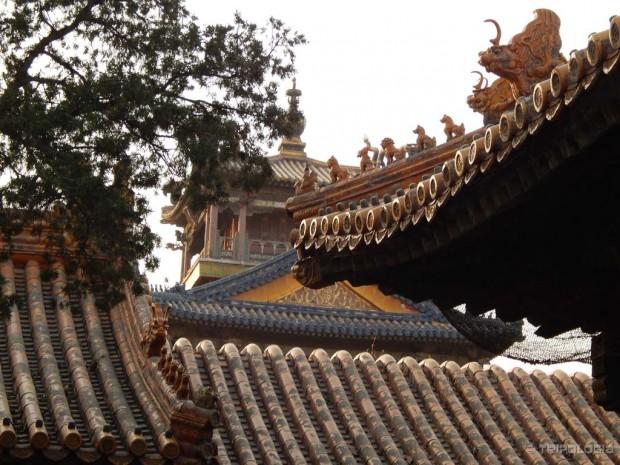 Prelijepi krovovi Zabranjenog grada