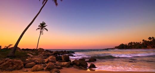 exopic-beach-720