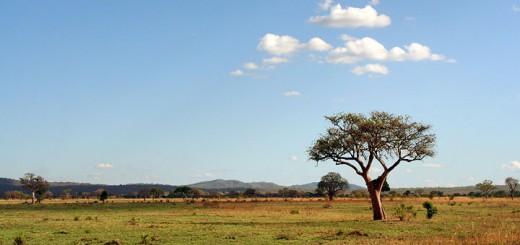 Afrika4-720