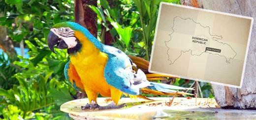 Dominican-Republic-720