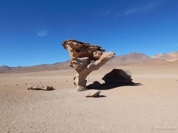Arbol de Piedra - kameno drvo, sam bog zna što ga drži u zraku