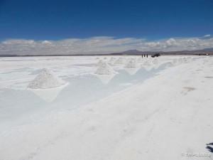 Colchani - tvornica soli