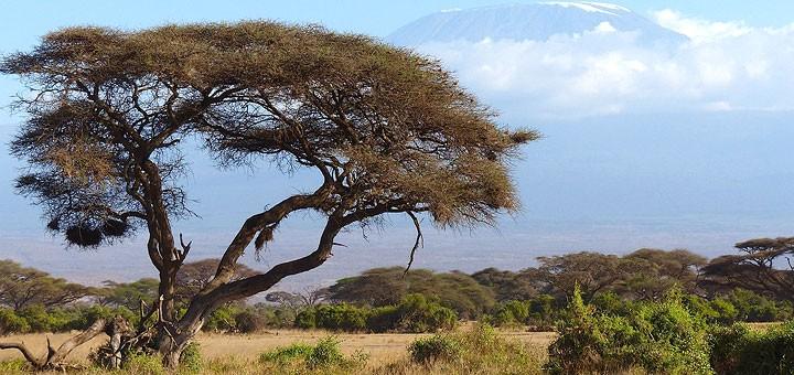 Kenija-720