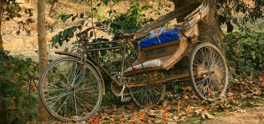 Rickshaw-720