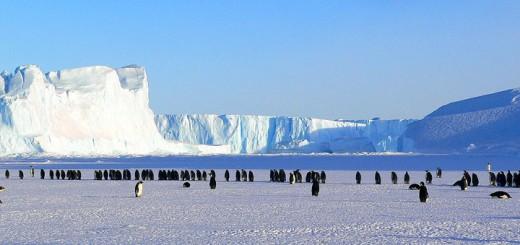 Antartica-720