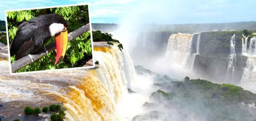 Iguazu-720