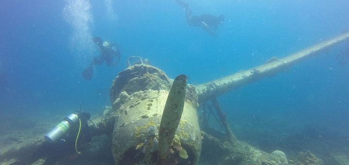 Palau-720