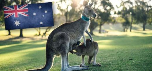 Australia-720