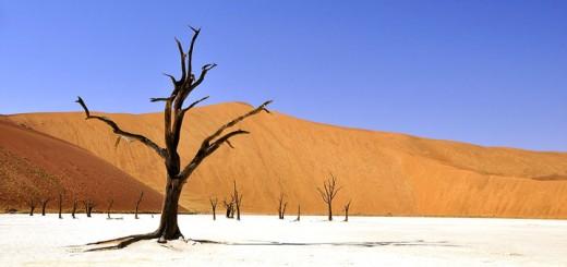 Namibia-720