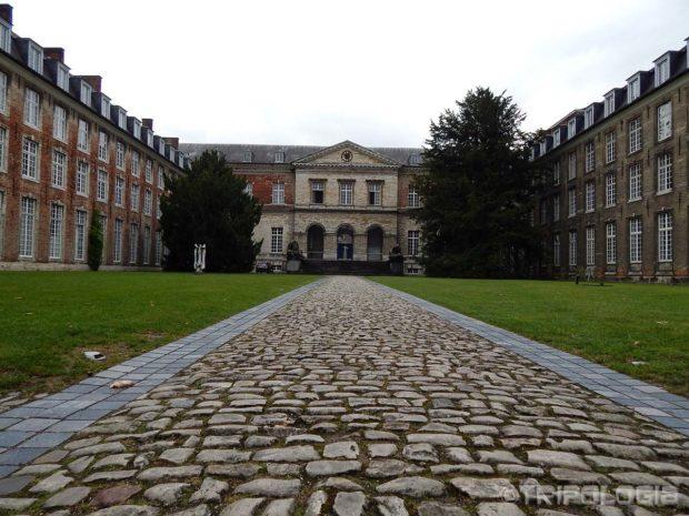 Mirno dvorište jedne univerzitetske zgrade