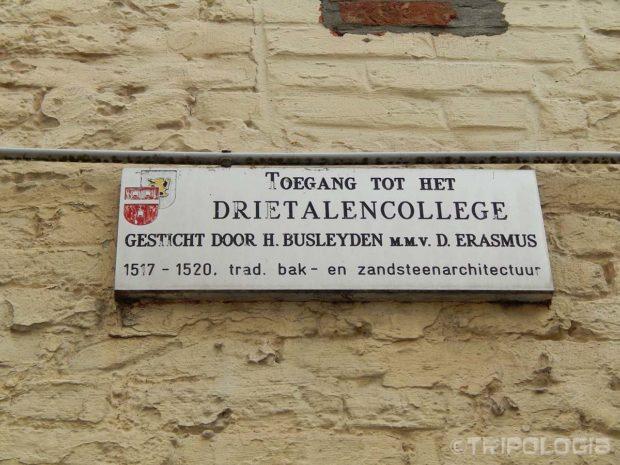 Table sa Erasmusovim imenom su posvuda po gradu...